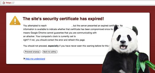 panda-ssl-certificate-seo